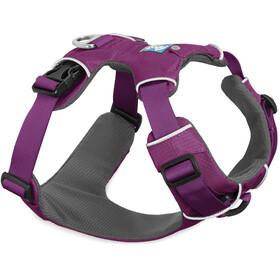 Ruffwear Front Range Baudrier, tillandsia purple